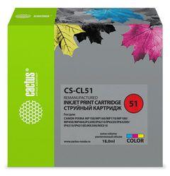Совместимый картридж Cactus CS-CL-51 0618B025