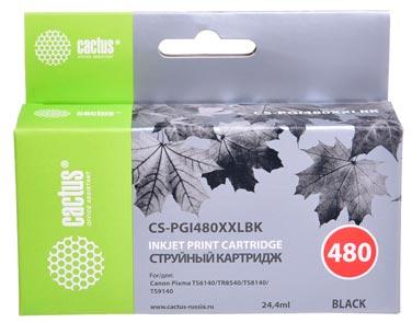 Совместимый картридж Cactus CS-PGI-480XXLPGBK 1969C001