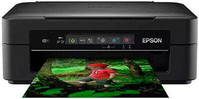 универсальный принтер по доступной цене